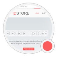 IDSTORE Color