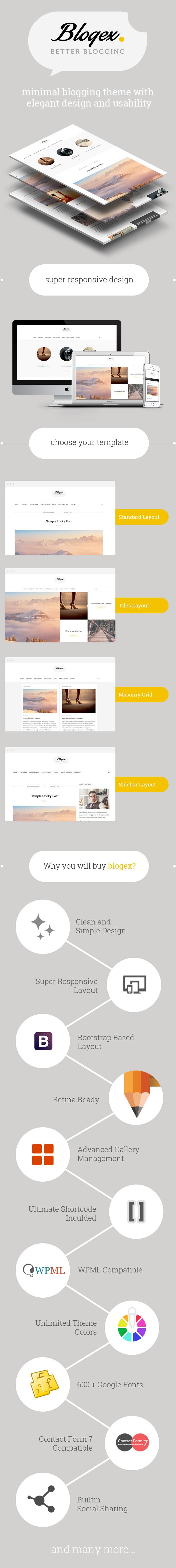 Blogex - Minimal Responsive Wordpress Blog Theme - 1
