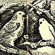 birds drawing in moleskine