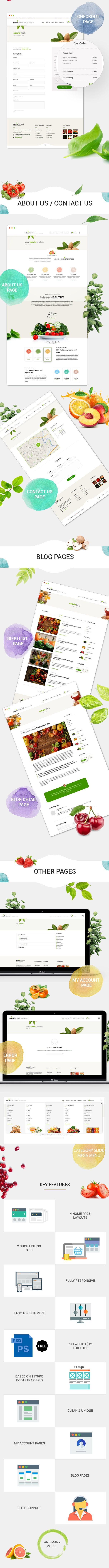 Naturix - Organic Store Woocommerce Theme with Drag n Drop Page Builder - 3