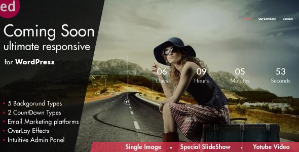 Social Share Page Views AddOn - WordPress - 12