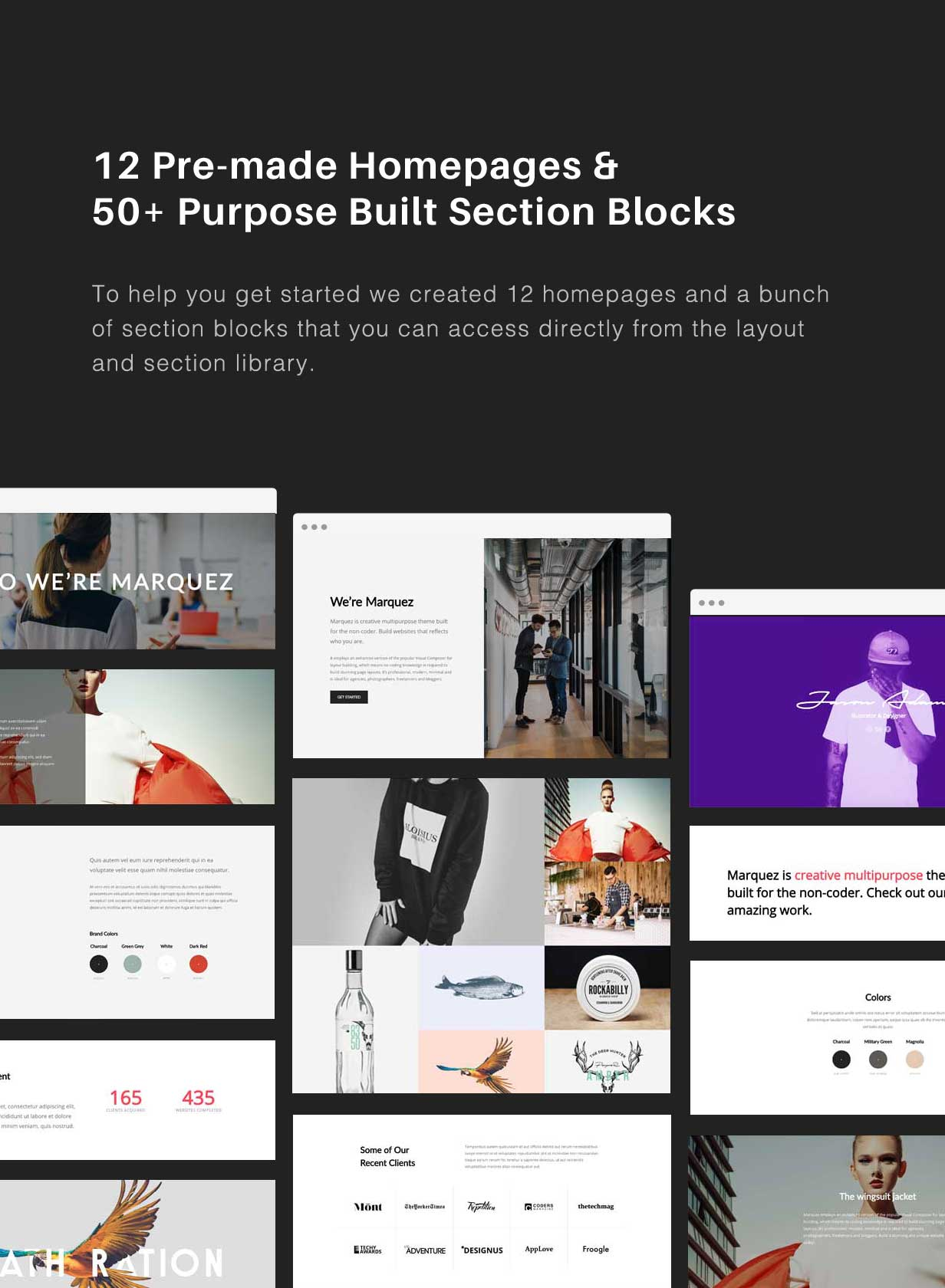 Marquez - A Creative WordPress Theme for Creatives and Agencies by ...