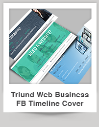 Triund Web Business Bi-Fold Brochure - 5