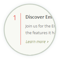 Emerix theme - Homepage style