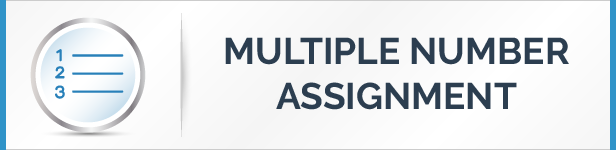 Multiple Number Assignment Feature