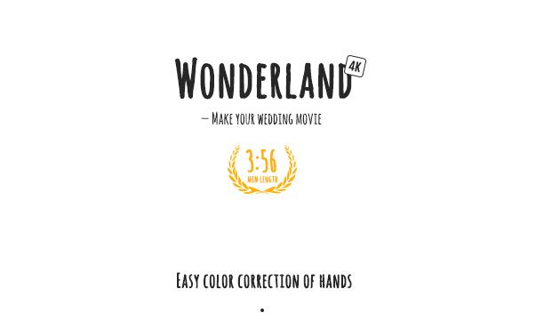 AE模板 浪漫回忆爱情婚礼视频 Videohive Wonderland | Love Story 免费下载