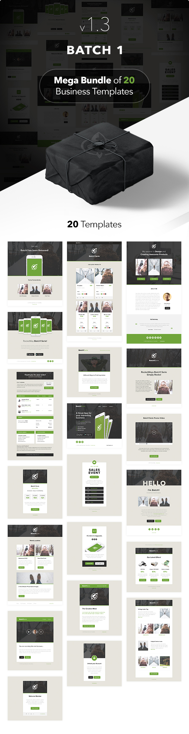 Batch1 - Complete Set of 20 Business Email Templates - 1