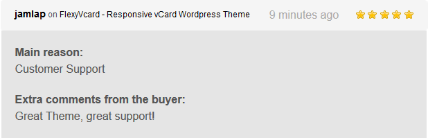FlexyVcard - Responsive vCard Wordpress Theme - 6