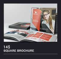 Trifold Brochure - 50