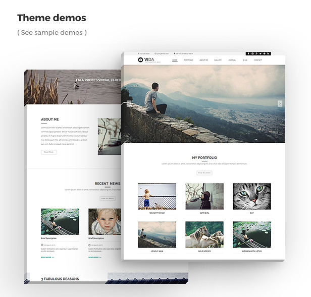 Vida - Multipurpose Muse Template - 9