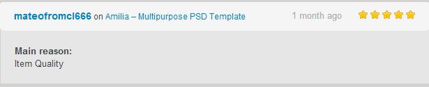 Amilia – Multipurpose PSD Template - 8