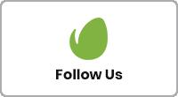 Itonga - Portfolio & Personal Blog WordPress Theme - 3