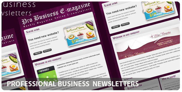 Professional Domain Hosting E-newsletters - 9