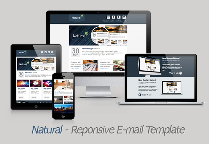 Natural  Responsive Email Template By Akedodee  Themeforest