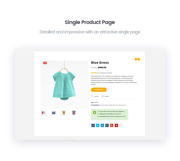 BerryKids baby store with impressive single product page