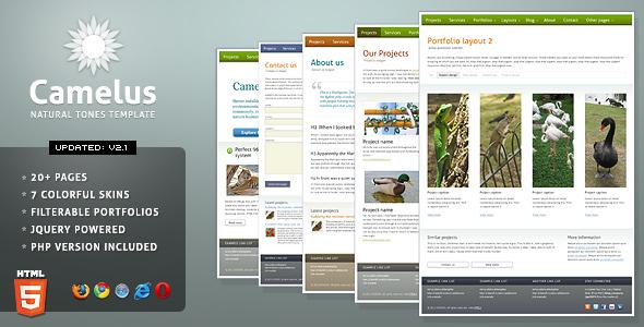 SilverSlide - premium portfolio theme (3x2) - 11