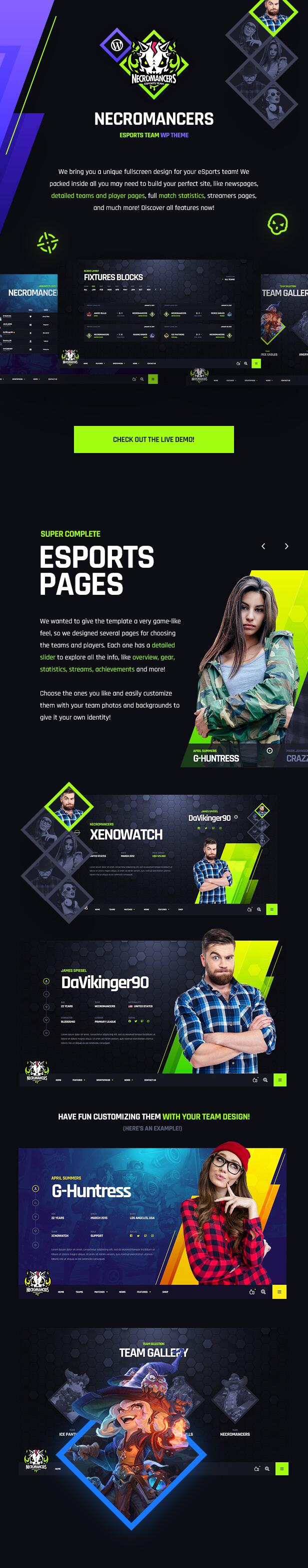 Necromancers - eSports & Gaming Team WordPress Theme - Overview