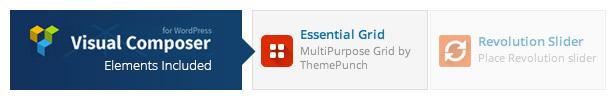 Essential Grid Gallery WordPress Plugin - 6