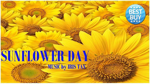 Sunflower Day Pic