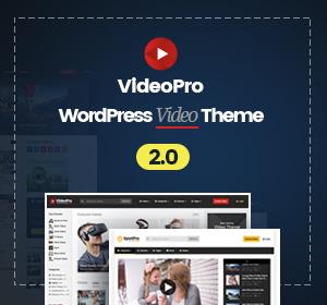 WordPress Video Robot - The Ultimate Video Importer - 24