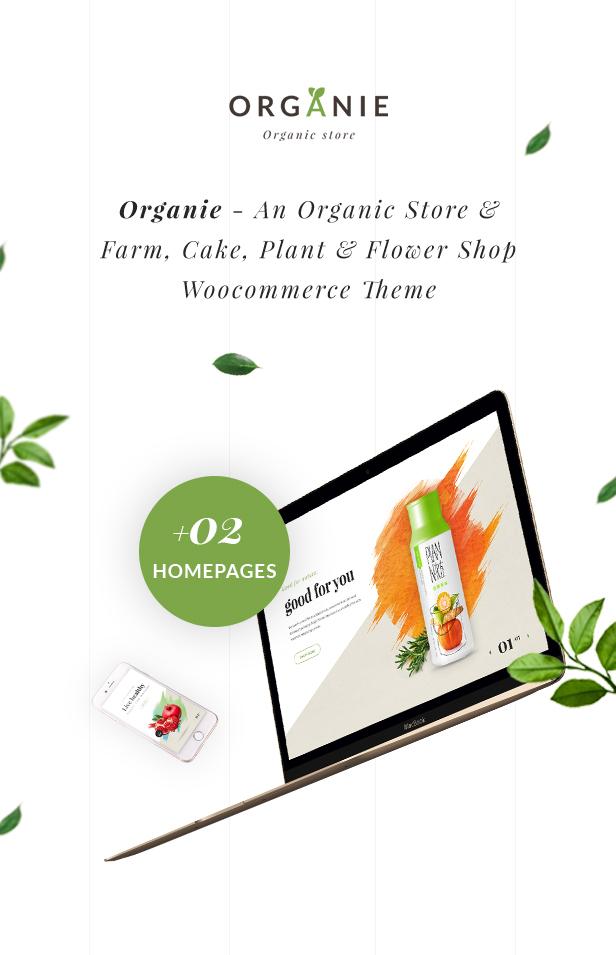 Organic Store WordPress theme - New 2 homepages