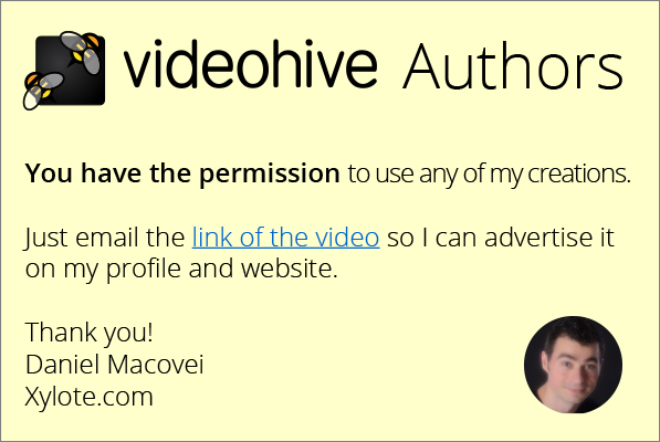 Video Hive Authors