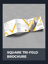 Square Brochure - 29