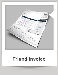 Triund Web Business Bi-Fold Brochure - 11
