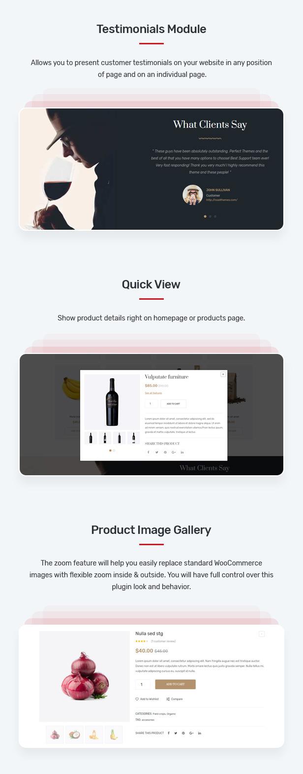 Belly - Multipurpose Theme for WooCommerce WordPress 25