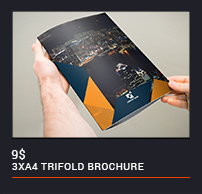 Trifold Brochure - 95