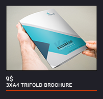 Trifold Brochure - 85