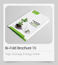 Bi-Fold Brochure 35 - 15
