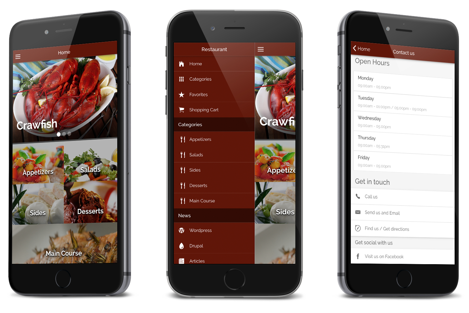 Restaurant Ionic Classy- Full Application with Firebase backend - 5