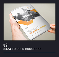Trifold Brochure - 86