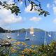 Paradise Island Bay With Boats