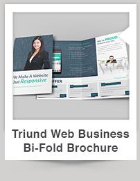 Triund Web Business Bi-Fold Brochure - 3