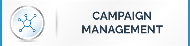 Campaign Management System: