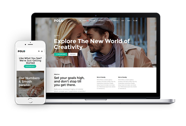 A Powerful WORDPRESS Multipurpose THEME Polo