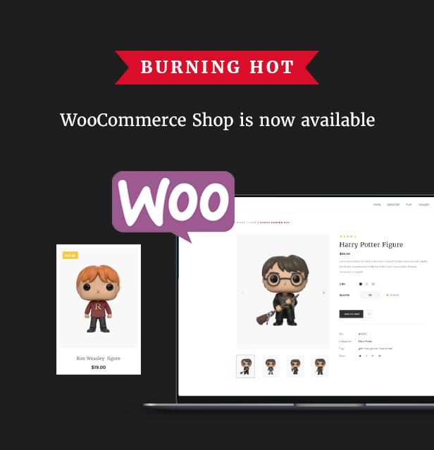 Filmmaker Director Film Studio WordPress Theme - WooCommerce Shop