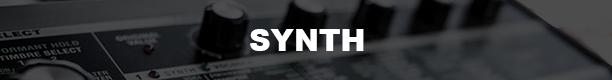 PLS-Synth