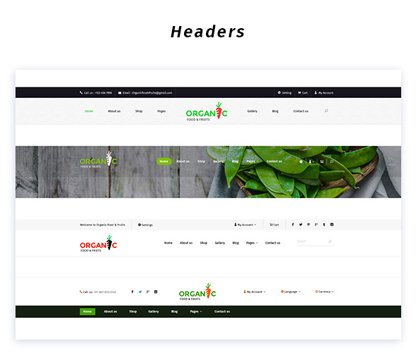 Organic Foods and Fruits PSD Template - 6