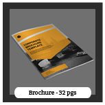 Minion Brochure Templates - 27