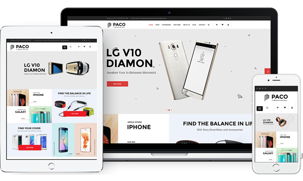 SM Paco - Fully Responsive