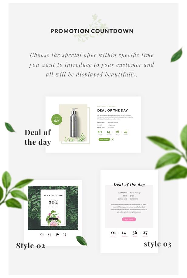 Organic Store WordPress theme - Promotion Countdown