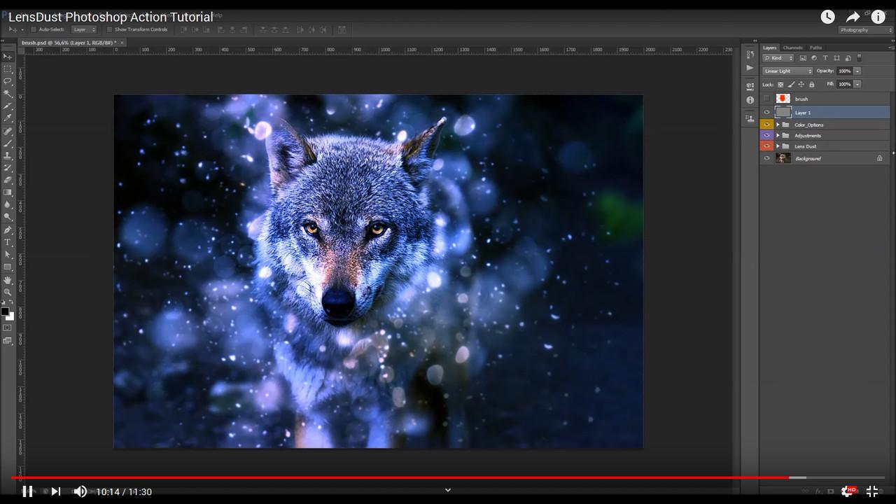 LensDust Photoshop Action - 1