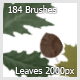 42 Brushes Flowers (Color Pencil) - 14