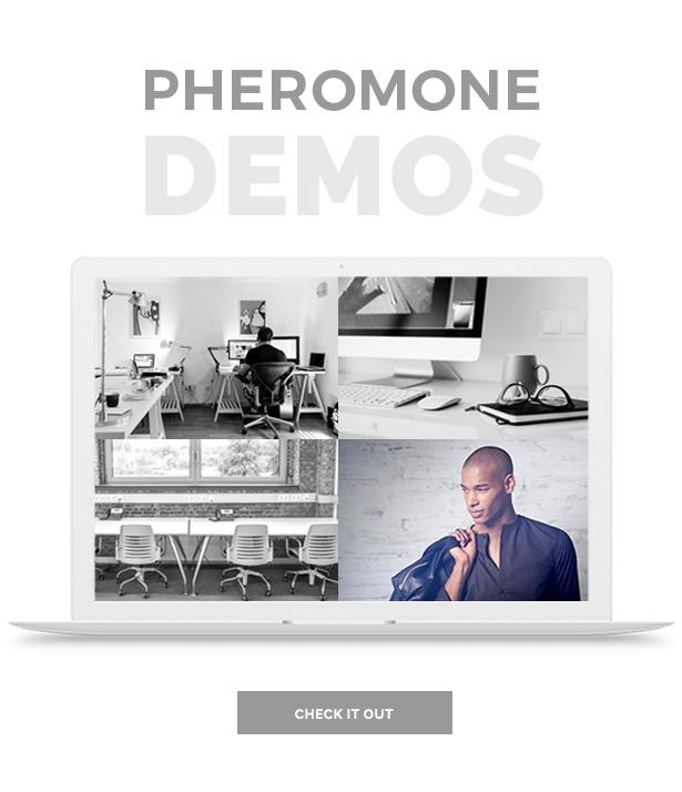 Pheromone - Responsive Multi-Concept Template - 5