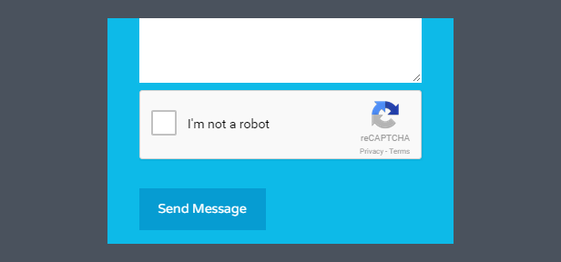 Google reCAPTCHA Support Included