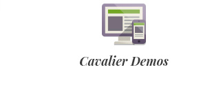 Cavalier - We Sell the Trends. Woocommerce Theme - 3