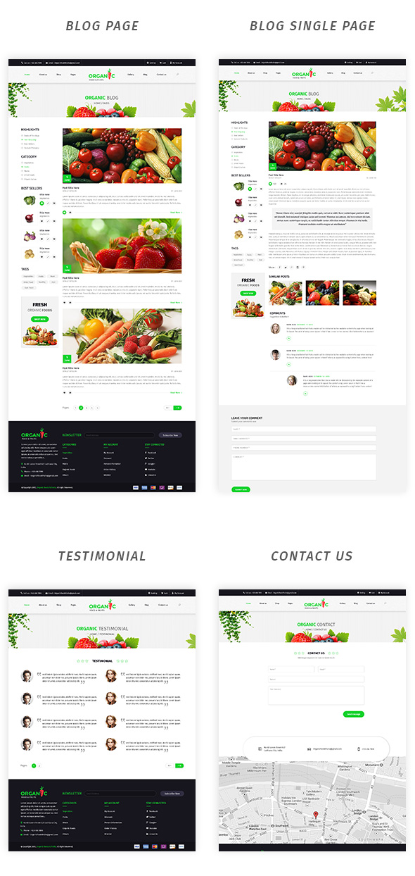 Organic Foods and Fruits PSD Template - 4